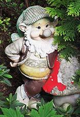 """""""gnome"""""""